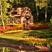 Daily Disney - Canada Gardens