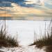 Clear water beach sand