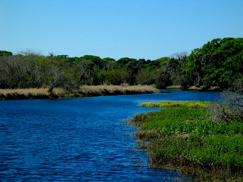 Myakka River State Park River Trees Blue Sky Grasses | by cdsessums