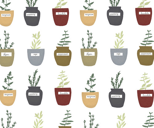 Herb print. | by Clare Owen Illustration