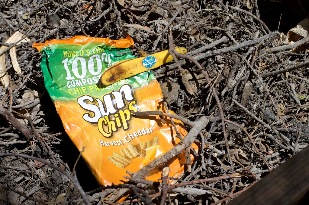 2010  365  117 wither the chip bag