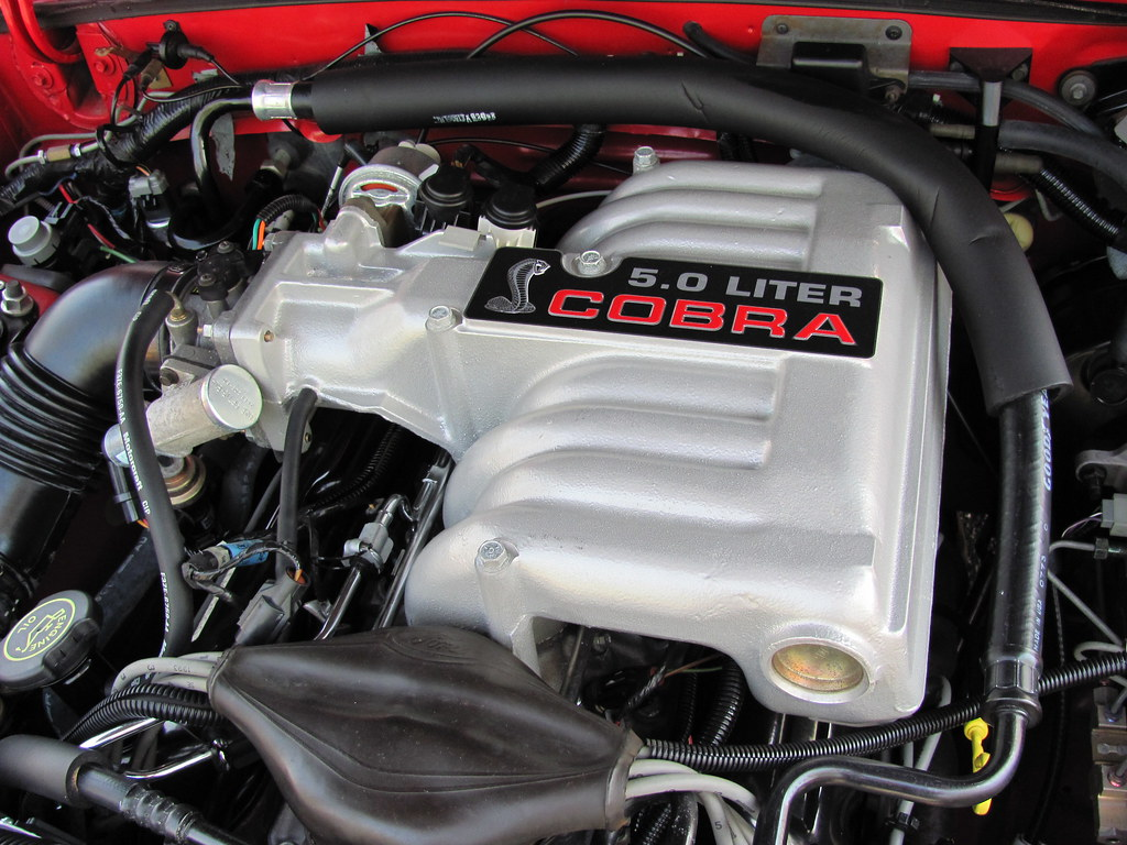 1993 Ford Mustang Cobra Engine At Car Show Museum Of Tra
