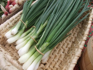 Green Onions | by swampkitty