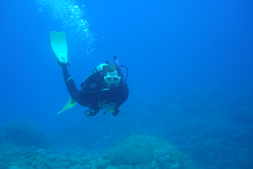 Diving the Gulf of Aqaba | by magnusfranklin