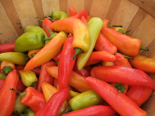 Colorful Peppers | by swampkitty
