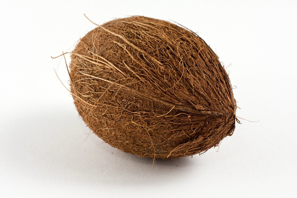 oval shaped brown coconut brown coconut with dried outer l flickr