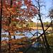 Fall at Lake Maria State Park