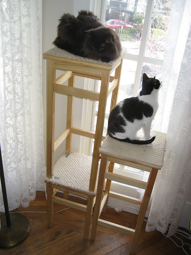 ikea hack cat tower three stools carpet samples a coup flickr. Black Bedroom Furniture Sets. Home Design Ideas