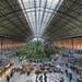 Puerta de Atocha Railway Station Hall #2 :: HDR :: DRI