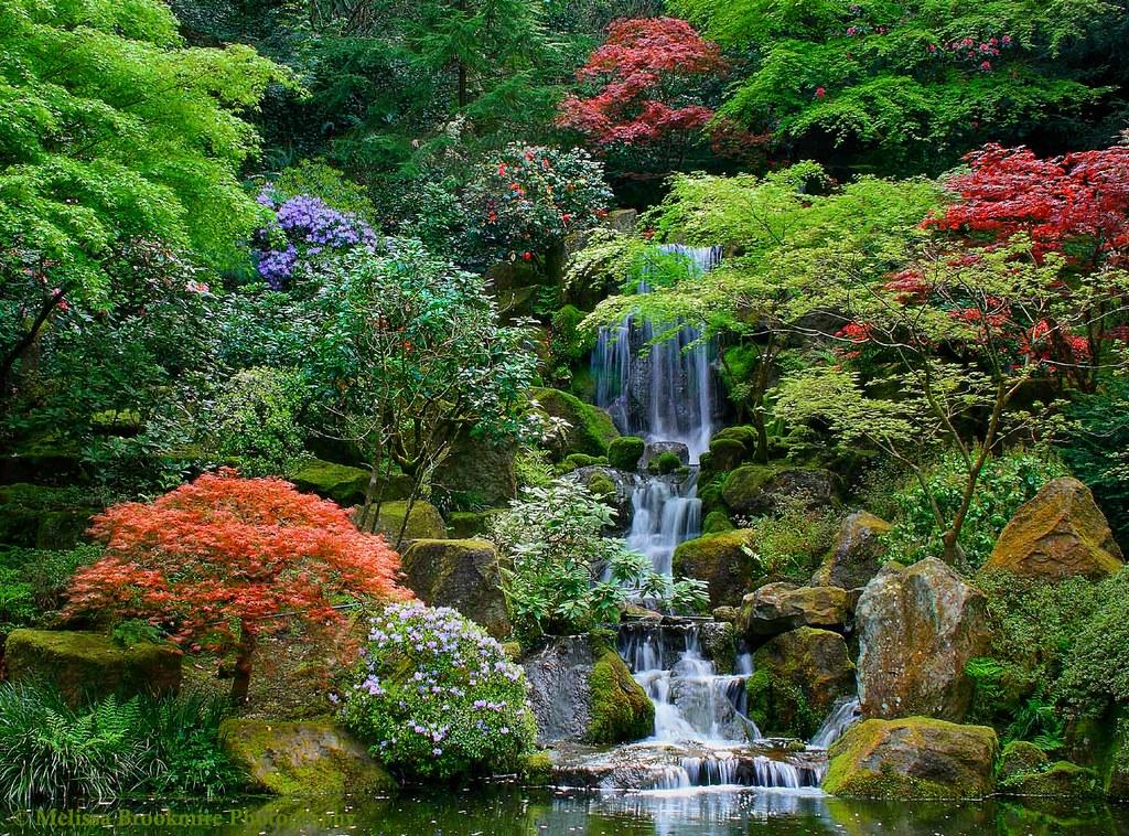 Portland Japanese Gardens Portland Or I Paid A Visit