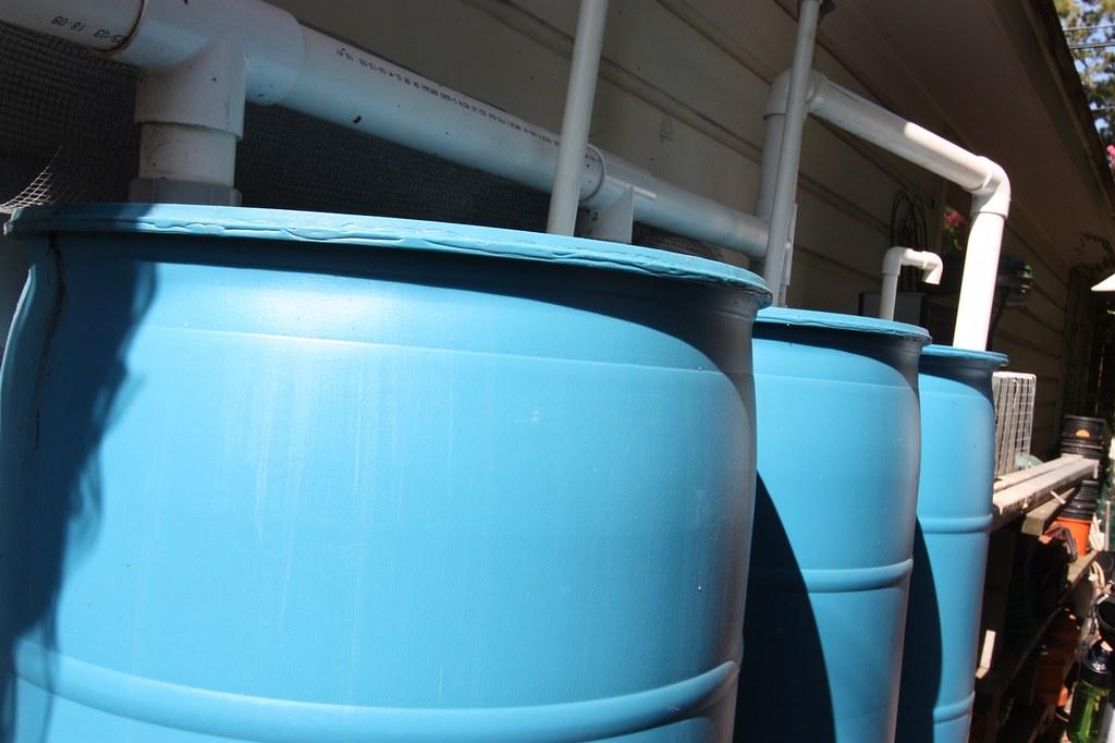 Water Barrels Rain Water