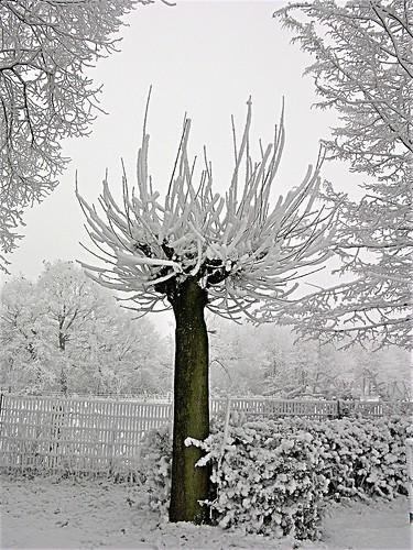 schnee frost schauspiel an der grundschule in recklinghaus flickr. Black Bedroom Furniture Sets. Home Design Ideas