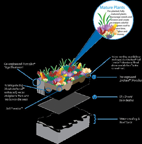 Green Roof Systems LiveRoof System Layers | LiveRoof brand Green Roof Systems ...
