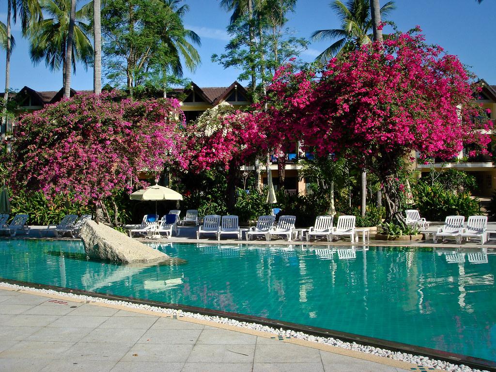 Resort In Phuket Patong Beach