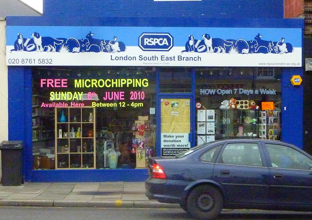 Free Microchipping For Cats In Crawley