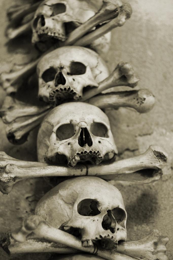 Skulls and Humeri | stack of skulls and humerus bones ...
