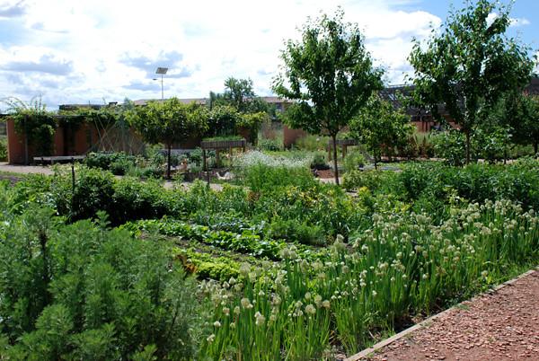 Jardins Du Mus Um De Toulouse Printemps 2010 Au Jardins