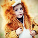 trick or treat lion