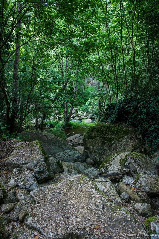 Cerca de la Font de Santa Margarida