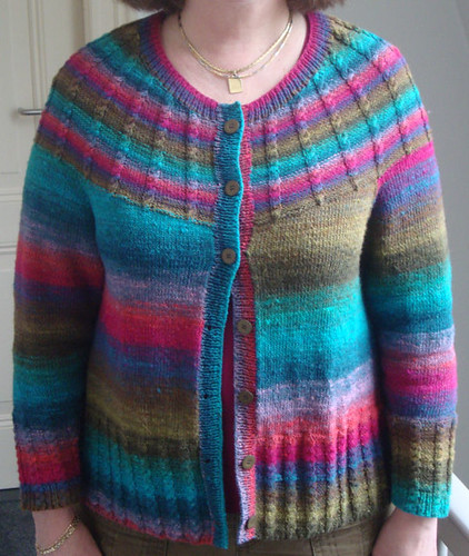 Noro vest 5 | by Ingrid A