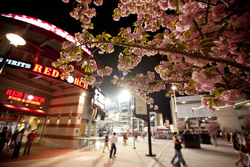 nationals park, dc | by eschipul