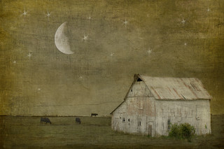 sleep tight | by jamie heiden