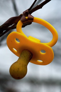 DAP_2490 - Version 2 | by porcupinex