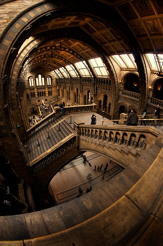Natural History Museum | by martinturner
