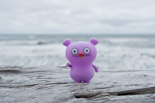 Uglyworld #566 - Trunko at The Pacific Ocean | by www.bazpics.com