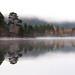 Misty reflection, Glen Affric