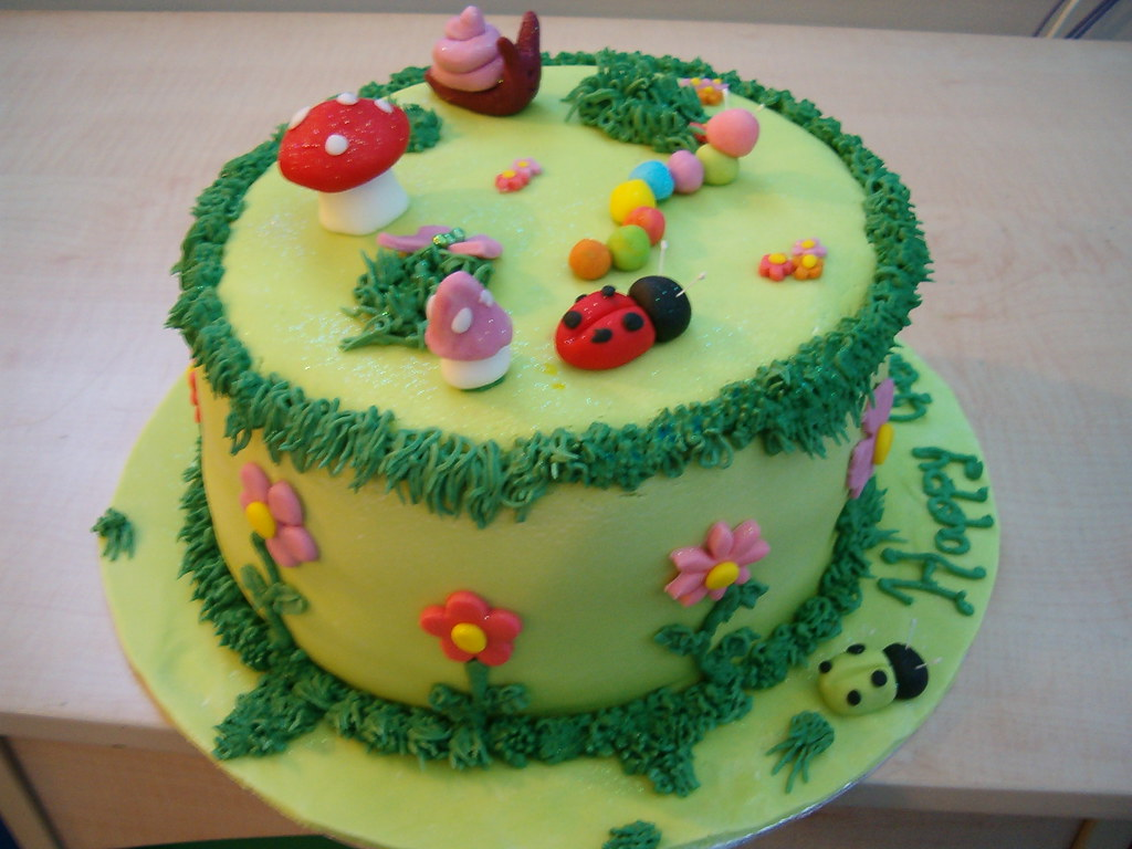 Bug Garden Birthday Cake Anges Cakes Peterborough Flickr