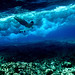 subaquatic navigation