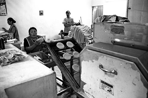 tortillas machine progreso yucat n m xico nov 09 gwendal danguy des deserts flickr. Black Bedroom Furniture Sets. Home Design Ideas