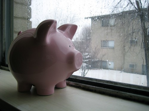 Piggy Bank Awaits the Spring | by bradipo
