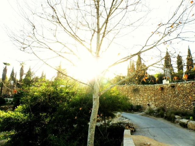 Valley of Hinnom | גיא בן הינום