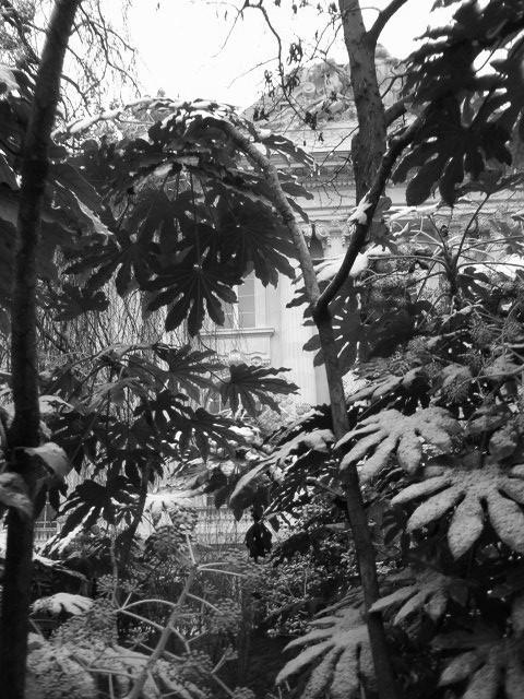Jardin de la vall e suisse arri re du grand palais 8 me flickr - Jardin de la vallee ...