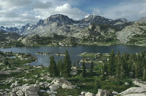 Mountain Creek Lake Homes For Sale