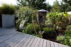 Tropical Garden Ideas Uk the 'tropical garden'earth designs. www.earthdesigns.c… | flickr