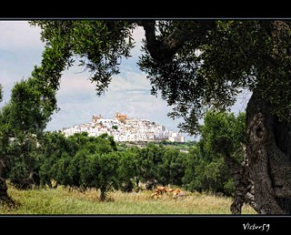Ostuni | by sirVictor59