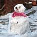 One Eyed Snowman