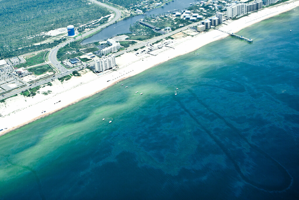 Gulf Shores Beach Club Condo Rentals