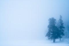 Quietness by TAKleven