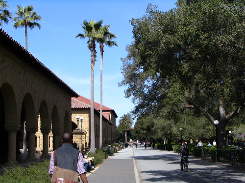 Stanford's campus | by shedd