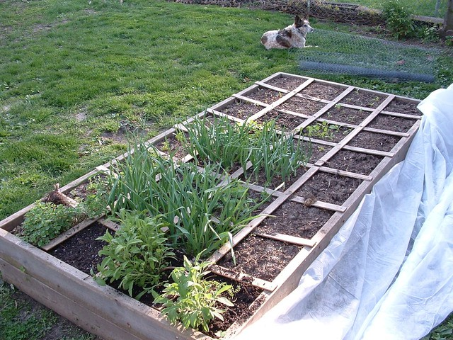 Raised Beds With Garden Edging Logs