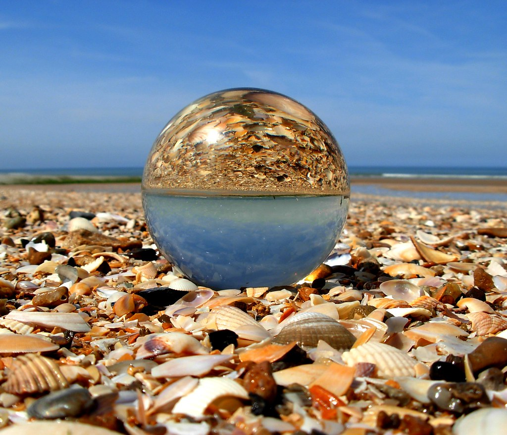 Shells Through The Crystal Ball Houlgate In Normandy