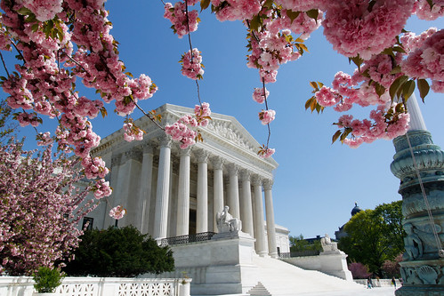 Supreme Court in Bloom | by timsackton
