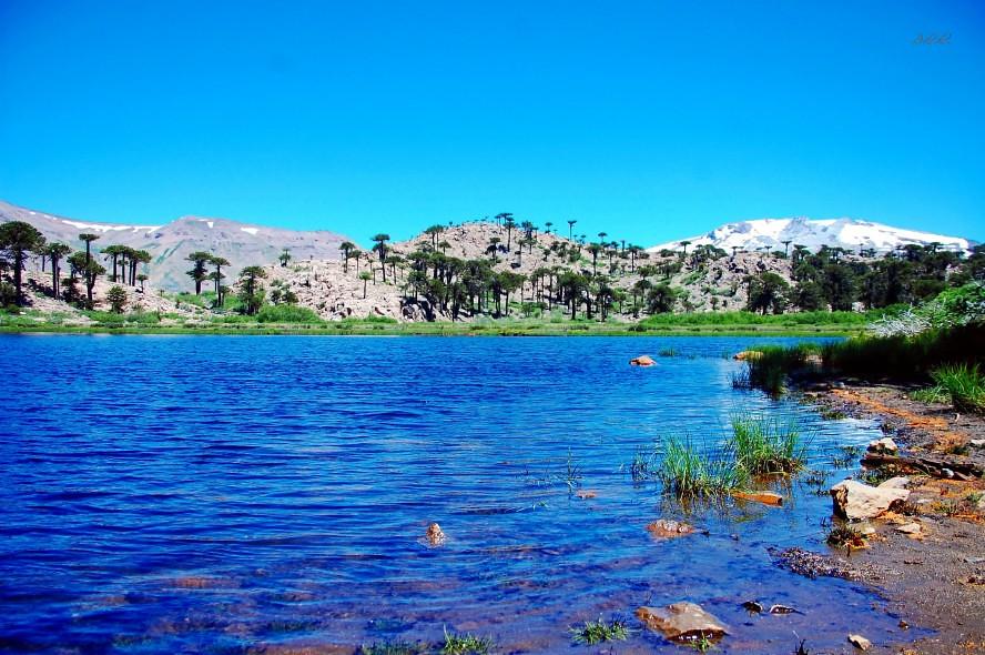 Laguna escondida neuqu n argentina todos los derechos for Ventanas hacia el vecino argentina