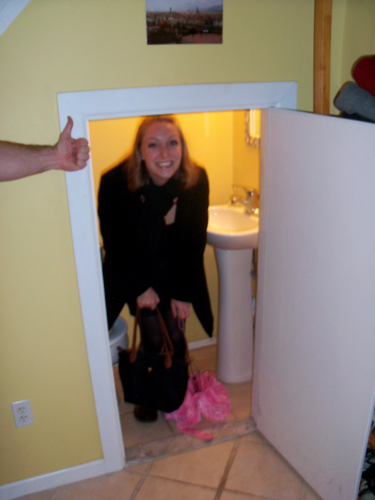 New year 39 s eve featuring the world 39 s smallest bathroom for Bathroom design under stairs