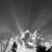 sky rays (1)
