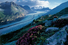 UNESCO World Heritage Swiss Alps Jungfrau-Aletsch | by MySwitzerland.com